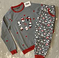 Пижама детская на байке подростковая  ПИНГВИНЫ