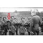 Плащ-палатка M34 Вермахт/Люфтваффе Историческая копия (под заказ), [1355] Камуфляж Вермахта, фото 9