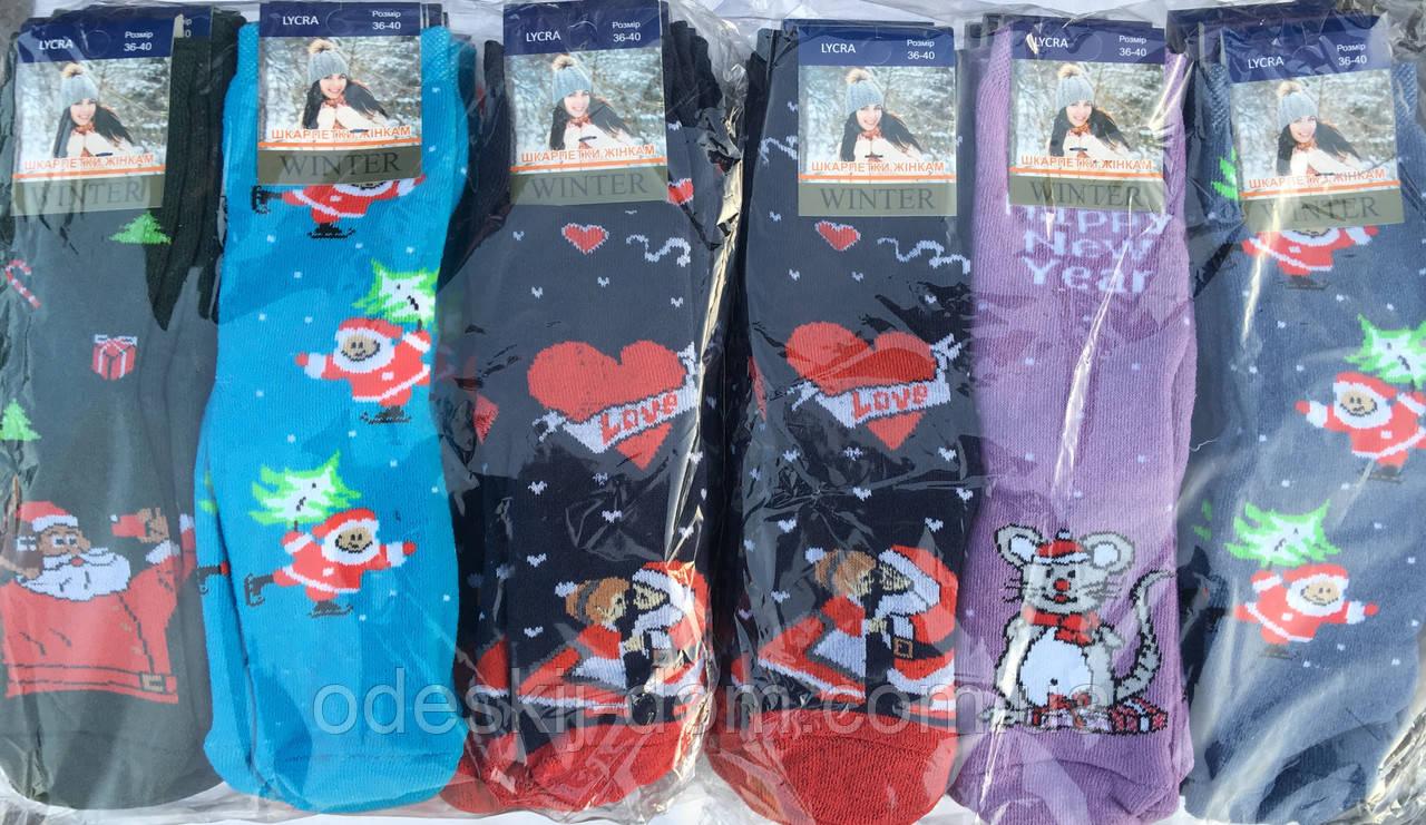 Женские новогодние махровые носки стрейч™Универсал Житомир