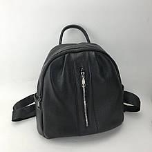Рюкзак с вертикальной молнией спереди / натуральная кожа #2837 Черный