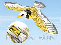 Eagle Летающий орёл