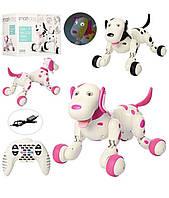 Интерактивная собака-робот на р/у HappyCow Smart Dog