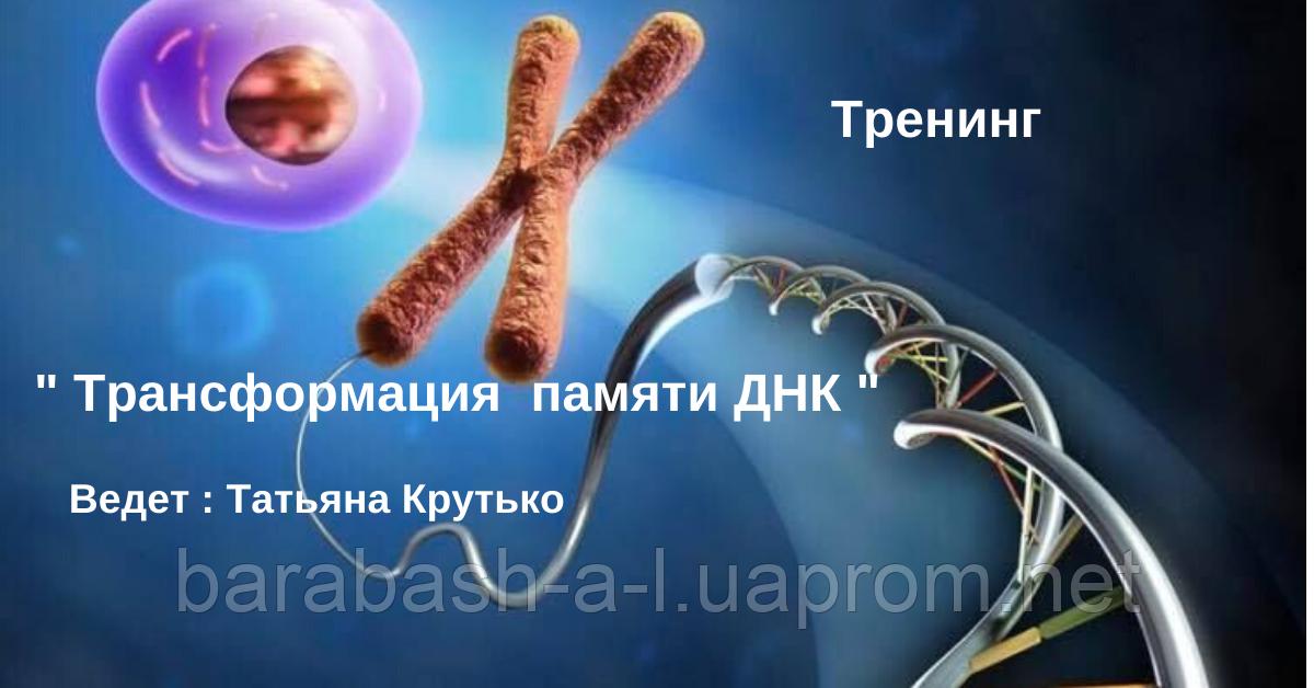 """Тренинг """"Трансформация памяти ДНК"""""""