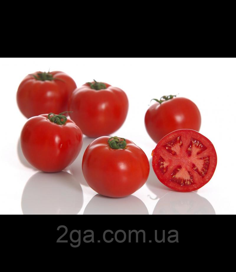 Линда F1 / Linda F1 - детерминантный томат, Sakata. 1000 семян