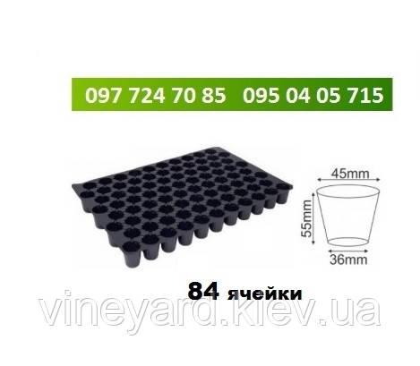 Кассеты для рассады 84 ячейки Цилиндрические 650 мкм СТАНДАРТ Размер 40х60 Под торфяные таблетки