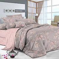Двуспальный комплект постельного белья евро 200*220 хлопок  (10979) TM KRISPOL Украина