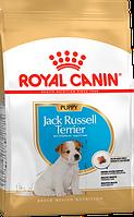 Royal Canin Jack Russell Terrier Junior (Роял Канин) - сухой корм для щенков породы Джек Рассел терьер 3 кг, фото 1
