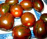 Криспина Плюм 250 шт семена томата тигрового высокорослого Esasem Италия, фото 3