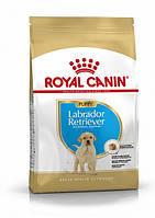 Royal Canin Labrador Retriever Puppy (Роял Канин) - сухой кори для щенков породы Лабрадор Ретривер 3 кг, фото 1