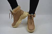 Ботинки женские зимние BV 52-704 коричневые замша, фото 1