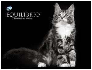 Корм для кошек Equilibrio