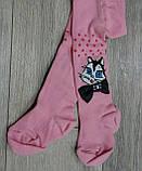 Хлопковые колготки для новорожденных р-р 3-6 мес, фото 2