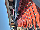 Жниварка для соняшника, фото 10