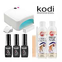 Стартовый набор гель-лаков Kodi (с УФ лампой 818 Mini) StSKd-42
