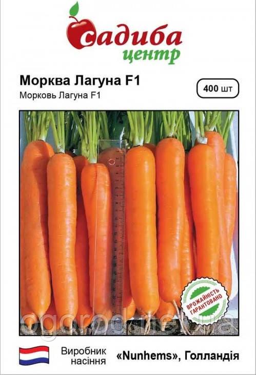 Лагуна F1 семена моркови Nunhems Голландия 400 шт