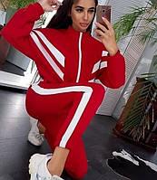 Спортивный костюм теплый трикотажный  на флисе (42-44)(44-46)