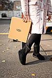 Женские Ugg Classic Short Black, женски угги, черные женски угги низкие, зимние женские угги, фото 6