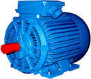 Электродвигатель АМН (250M6) 75кВт/1000об\мин, фото 2