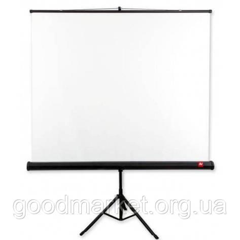 Екран AVTek Tripod Standard 175x175cm на триногі, фото 2