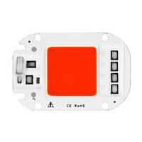 Светодиодная матрица с драйвером COB LED 50Вт 4500лм 220В, красная (FD3602)