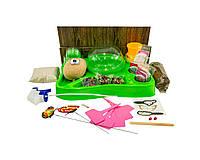Набор для выращивания растений Danko Toys Home Florarium 20 опытов (2451)