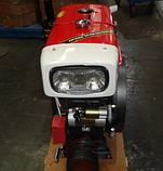Двигатель дизельный  ДД195ВЭ (12 л.с.), фото 7