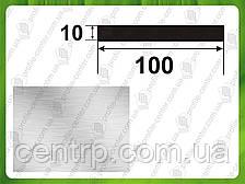 Алюминиевая полоса (шина) 100*10, Без покрытия