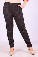 Женские теплые брюки с начёсом Золото A957-2-3 6XL Размер 48-52