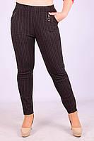 Женские теплые брюки с начёсом Золото A957-2-3 5XL Размер 46-50