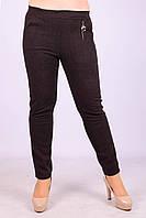 Женские теплые брюки с начёсом Золото A957-2-4 6XL Размер 48-52