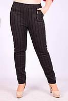Женские теплые брюки с начёсом Золото A957-2-1 7XL Размер 50-54