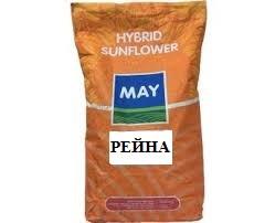 Семена подсолнуха Рейна / МАЙ АГРО / Насіння соняшнику Рейна