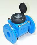 Счетчик холодной воды турбинный фланцевый Ду100 Powogaz MWN-50-100, фото 6