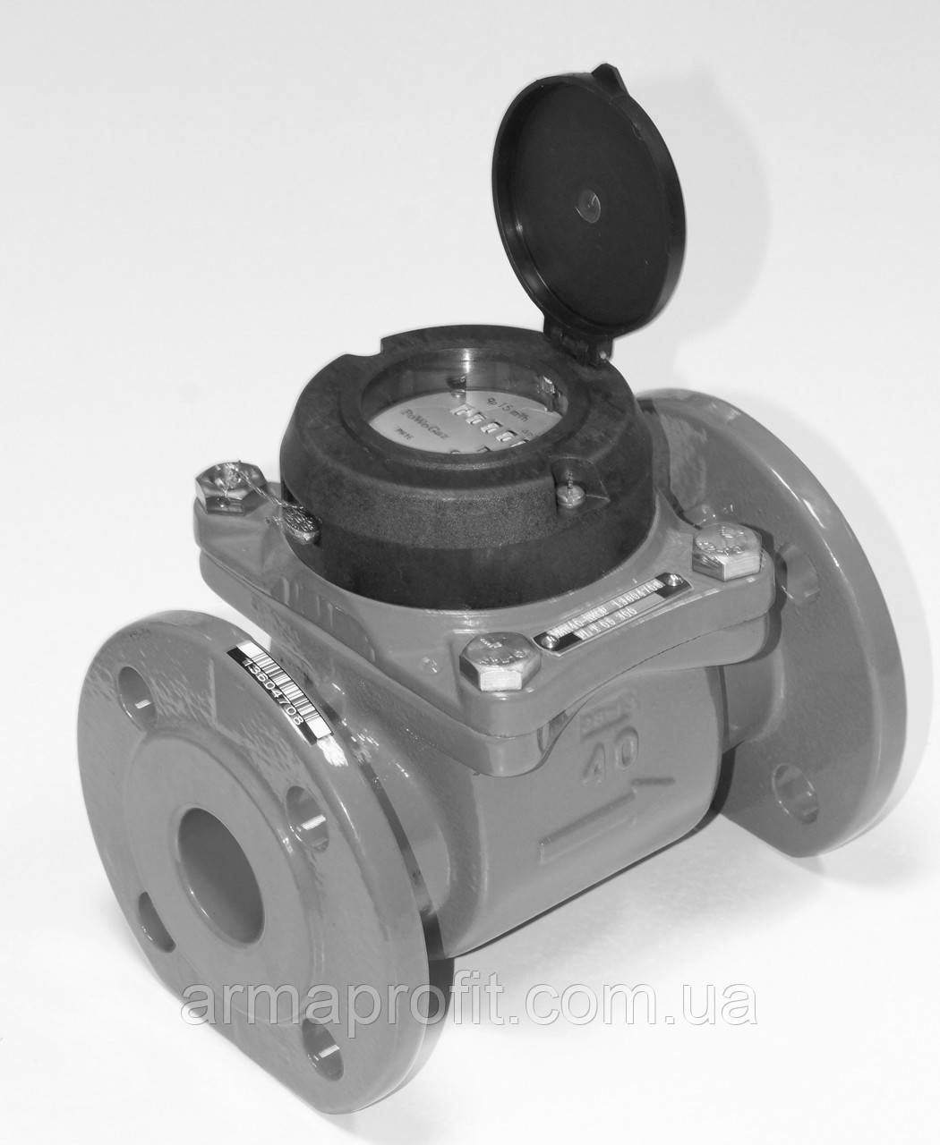 Счетчик холодной воды турбинный фланцевый Ду250 Powogaz MWN-50-250
