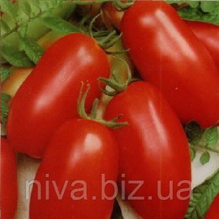 Рио Гранде семена томата дет. Vilmorin 500 г