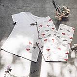 Хлопковая пижама с футболкой Летучие Мыши XXL, фото 3