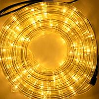 Гирлянда Шланг Дюралайт Жёлтый 2-х жильный, 1000 см, прозрачный провод, переходник (1-55)