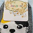 Шкарпетки жіночі з принтом котика сірі розмір 36-41, фото 3