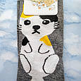 Шкарпетки жіночі з принтом котика сірі розмір 36-41, фото 2