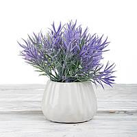 Декоративный вазон композиция из цветов в горшке Time-prezent розмарин фиолетовый (0268-8-2)