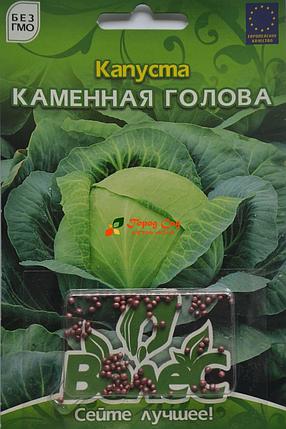 Семена капусты белокачанной Каменная голова 100шт инкр. ТМ ВЕЛЕС, фото 2