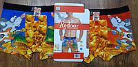 """Труси чоловічі, боксери""""Redoor"""" L-3XL Мишенята Art 3345"""