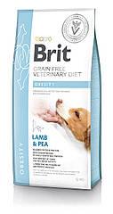 Сухой корм для собак Brit Veterinary Diet Dog Obesity беззерновой при избыточном весе и ожирении 12кг