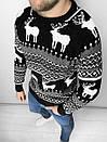 Мужской свитер с зимним принтом, Турция (две модели), фото 2