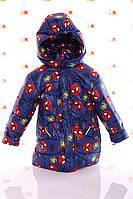 Куртка Евро для мальчика Spiderman синяя (размеры 92, 98, 104 и 116)