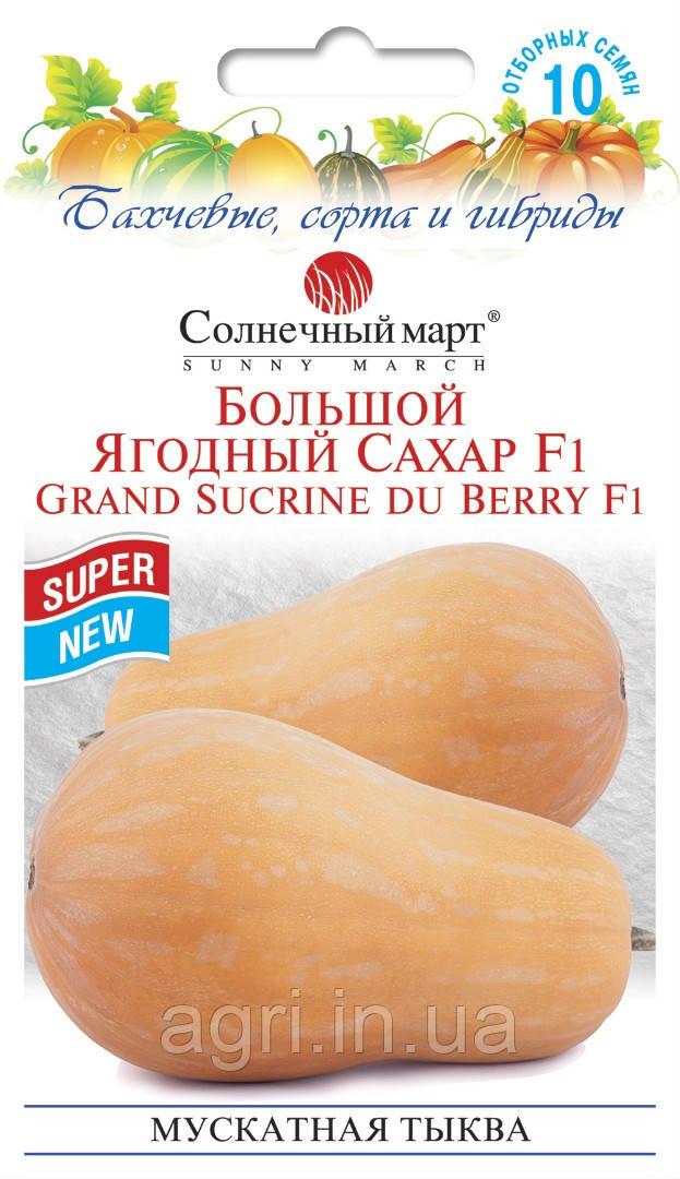 Тыква Большой ягодный сахар F1, 10шт.