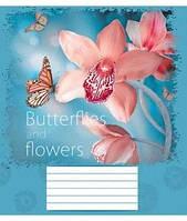 Тетрадь 18 листов, линия ассорти для девочек