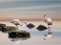 Фотообои Prestige Фламинго № 65-272*196 см