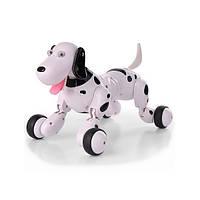 Собачка робот игрушка на р/у Happy Smart Dog Интерактивная поет, лает, танцует, выполняет трюки Black-White (HC-777-338B-RT)