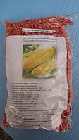 Кукурудза цукрова суперсолодка Оверленд F1 1 кг. Syngenta